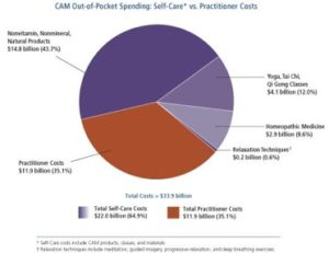 CAM out of pocket spending pie chart
