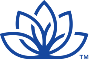 NAD Logo Inline PMS web blue