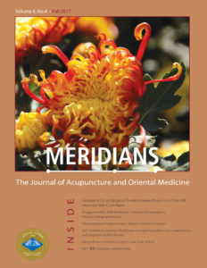 Meridians Journal Fall 2017 Cover Page Image