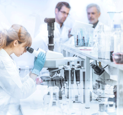 Researchers working in a laboratory.
